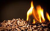 closeup image of wood pellets