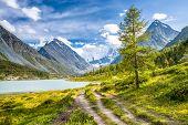 Altay Altai