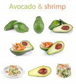 Set Fresh Avocado With Shrimp