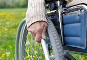 picture of handicapped  - Elderly handicapped woman sitting in a wheelchair - JPG
