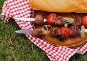 meat roasted on the fire skewers (shashlik) with tomatoes and mushrooms
