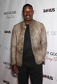 LOS ANGELES - OCT 29:  Dennis Haysbert arrives to the