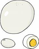Isolated Hard Boiled Egg
