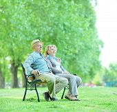 Mature couple sitting on a bench in park and relaxing shot with a tilt and shift lens