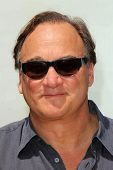 LOS ANGELES - MAY 3:  James Belushi at the