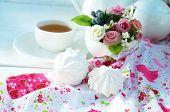 Zephyr An Cup Of Tea