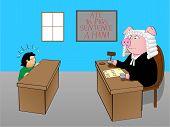 Judge pig