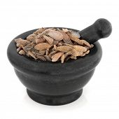 Turmeric curcuma root chinese herbal medicine in a black stone mortar with pestle over white backgro