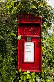 pic of postbox  - A red Royal Mail postbox in the rural village of Shobrooke - JPG