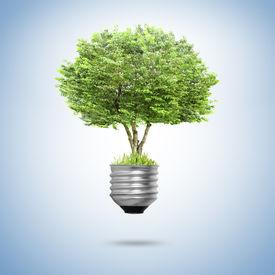 image of photosynthesis  - Idea  - JPG