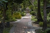 Park, Garden