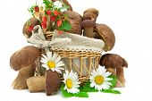 Basket With Mushrooms And Strawberries Closeup On White Background