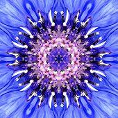 Blue Mandala Flower Center. Concentric Kaleidoscope Design