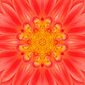 Orange Mandala Flower. Concentric Kalaidoscope Design
