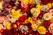 Mixed Rose Bouquet As Background