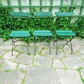 Green Chairs In Summer Garden