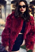Sexy Woman With Dark Hair In Luxurious Fur Coat And Sunglasses