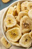 Homemade Dehydrated Banana Chips