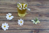 pic of chamomile  - chamomile and chamomile tea on a wooden table - JPG