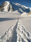 Climber making tracks in fresh snow crossing the Col Du Midi