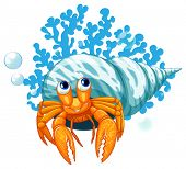 illustration of a close up hermit crab