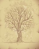 Tree on old paper