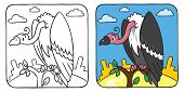 Funny vulture coloring book