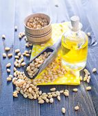 pine nuts and pine nut oil