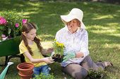 picture of granddaughters  - Happy grandmother with her granddaughter gardening on a sunny day - JPG