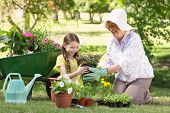 foto of kneeling  - Happy grandmother with her granddaughter gardening on a sunny day - JPG