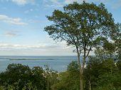 Sandy Hook View