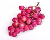 Purple grapes