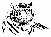 picture of tigress  - black silhouette of a wild tiger - JPG