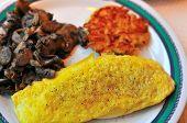 Western Egg Omelet
