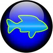 Fish Web Button