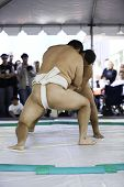 foto of loin cloth  - 4-01-07