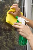 pic of trigger sprayer bottle  - Hands with spray cleaning the  window - JPG