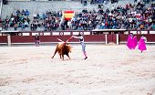 MADRID - OCTOBER 17:The banderillero is a torero who point a barbed banderillas colorful  sticks whi