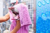 Japanese Akita Dog Spa. Big White And Wet Akita Inu Dog Bathing In The Bathtub With Funny Face Expre poster