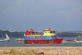 Pleasure Cruiser Sailing On The River Exe, Devon poster