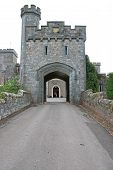 Road To The Gatehouse Of Powderham Castle, Devon poster