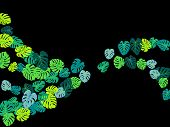 Teal Tropical Jungle Leaves Vector Scatter. Philodendron Or Monstera Plant Summer Background. Awesom poster