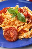Italian fettuccine pasta with milanese tomato sauce and basil
