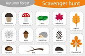 Scavenger Hunt, Autumn Forest, Different Colorful Autumn Pictures For Children, Fun Education Search poster