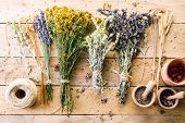 Harvesting Medicinal Herbs, Dry Flowers, Non-traditional Medicine, Ayurveda poster