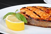 Grilled salmon on the white plate