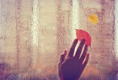 Sad Autumn Background, Old Hand Touches Wet Window With Autumn Leaves, Rainy Weather poster