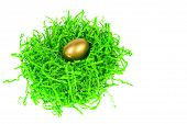 Golden Egg Nested In Green Decorative Grass