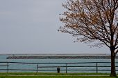 Waterfront park and breakwall as a rain storm approaches.