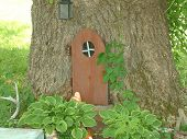Tree With A Door